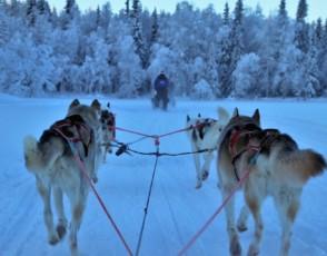 Лапландия – Приказка за възрастни