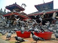 Снимка от Непал